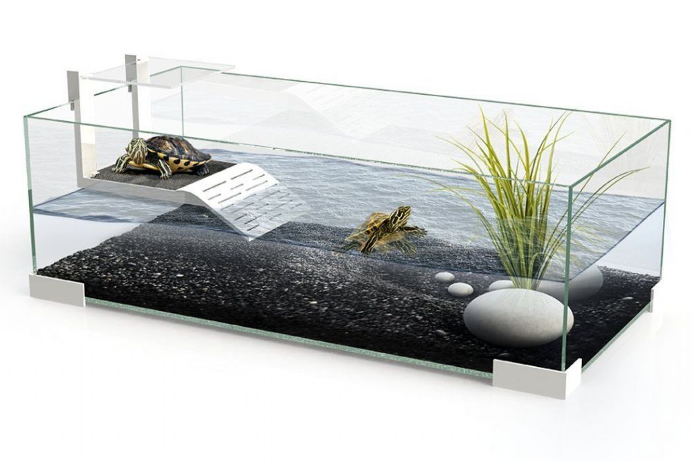 Tartarium 60 Turtle Terrapin Reptile Glass Tank With Ramp